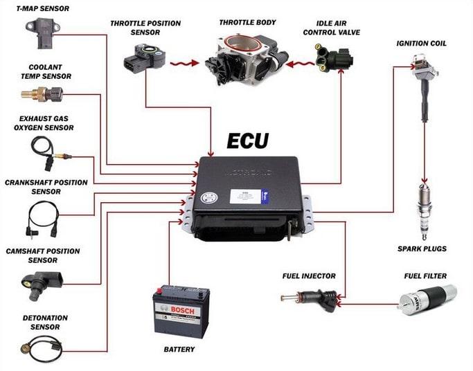Mô tả hệ thống ECU và cảm biến